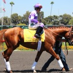 July 16 - I'll Have Another parades at Hollywood Park