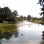 Kentucky Horse Park stream