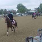 Kentucky Oaks horses work in pink saddlecloth