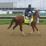 Derby contender Danza getting ready for workout