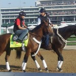 Kentucky Derby contender Goldencents