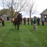 Three Chimneys Farm stands 2008 Kentucky Derby winner Big Brown