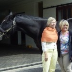 Tour members with stallion Arch