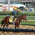 Kentucky Derby contender Bodemeister