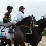 Oxbow passes box wi jockey Gary Stevens