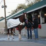 California Chrome getting a foot bath with Alan Shernman and Raul Rodriquez