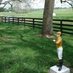Claiborne Farm jockey