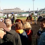 Oaks and Derby horses to the track