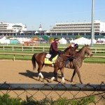Derby contender Firing Line on the track