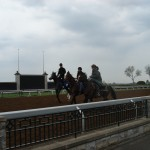 Morning workouts at Keeneland
