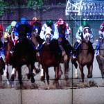 Digital hore race