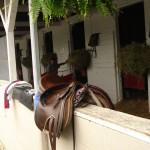 Derby winning saddle