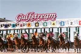 Gulfstre3am Park pink
