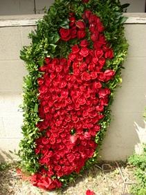 06 Blanket of roses