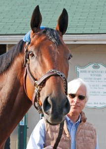 2014 Kentucky Derby winner American Pharoah