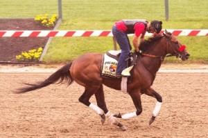 Photo by Maryland Jockey Club