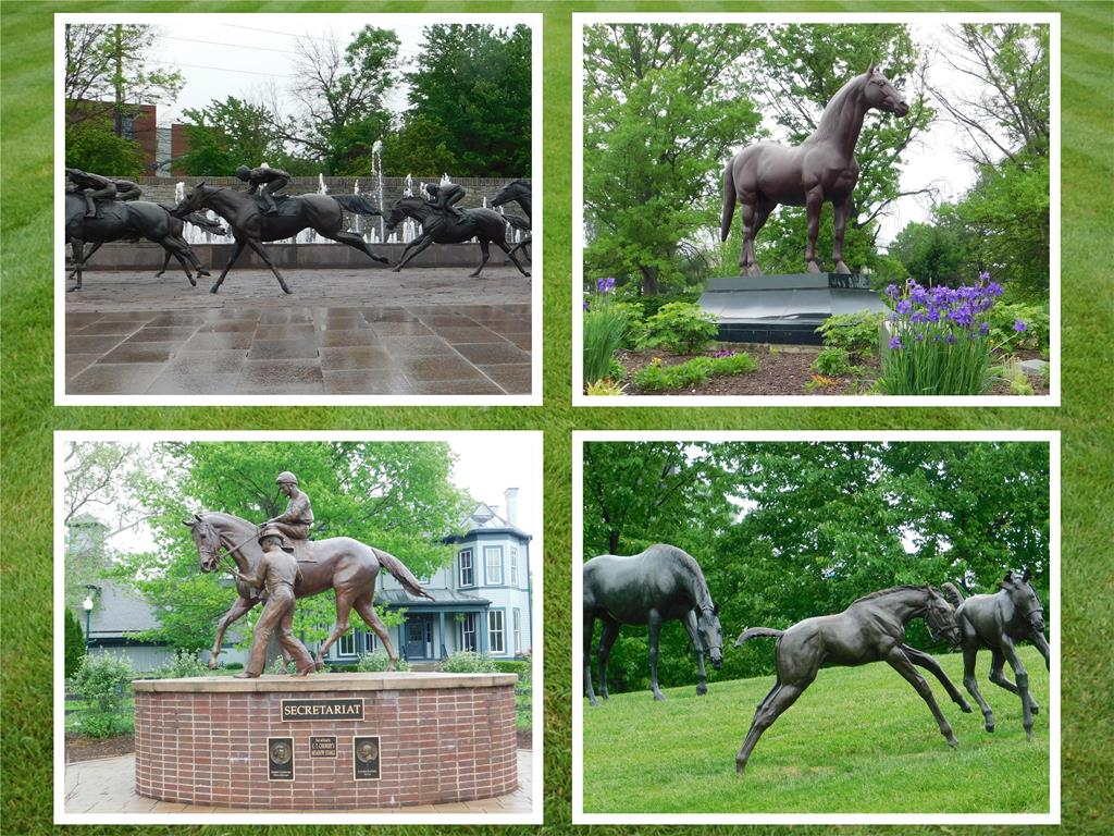 D 3 C day 3 Horse Park Thoroughbred Park