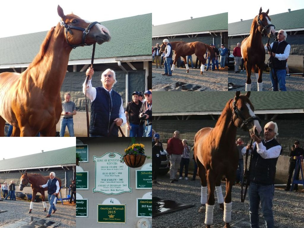 collage Justify Sunday