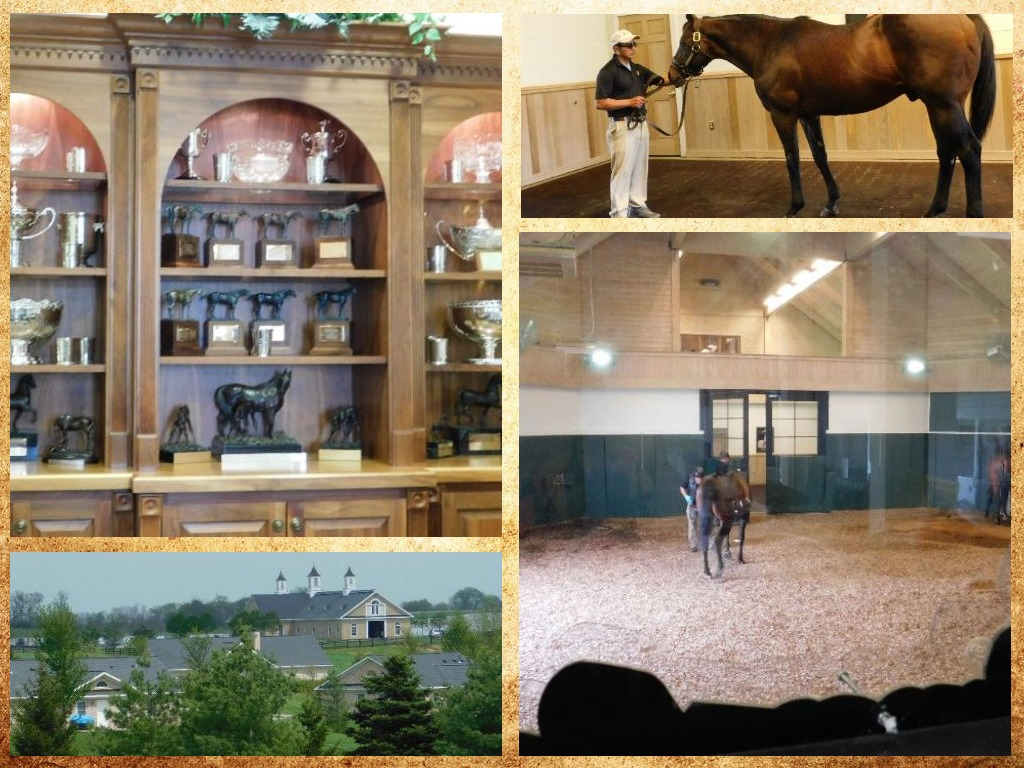 collage adena springs