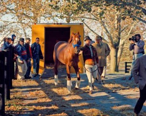 Tony Leonard photo of Secretariat arriving at Claiborne Farm following his retirement from racing.