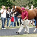 California Chrome is still retired from racing!