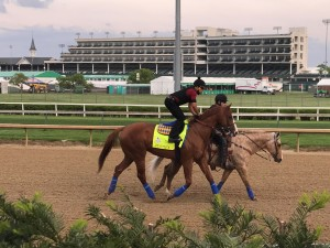 Justify at morning workouts Derby week