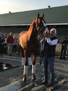 Photo by Kentucky Derby Tours